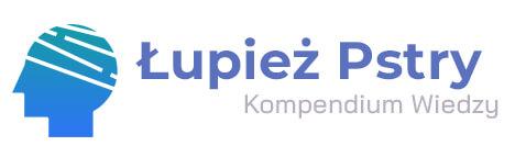 kompendium logo